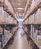 Notre entrepôt : Plus de 5000 produits actuellement en stock